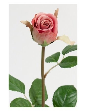 Dekorationsblomster - Rose på stilk, rosa. H50 cm
