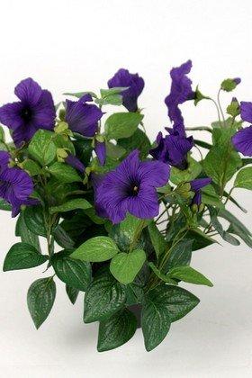 Dekorationsblomster -  Petunia i potte H30 cm