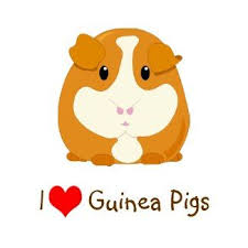 Little Farmers - Guinea Pigs- Monday 9th  March 10am - 11:30am