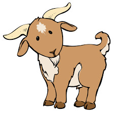 Little Farmers - Goats & Sheep - Monday 16th March  10am - 11:30am