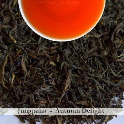 A DELIGHTFUL AND BOLD AUTUMNAL JUNGPANA   -  Darjeeling Autumn Flush Tea 2019    (100gm / 3.5oz)