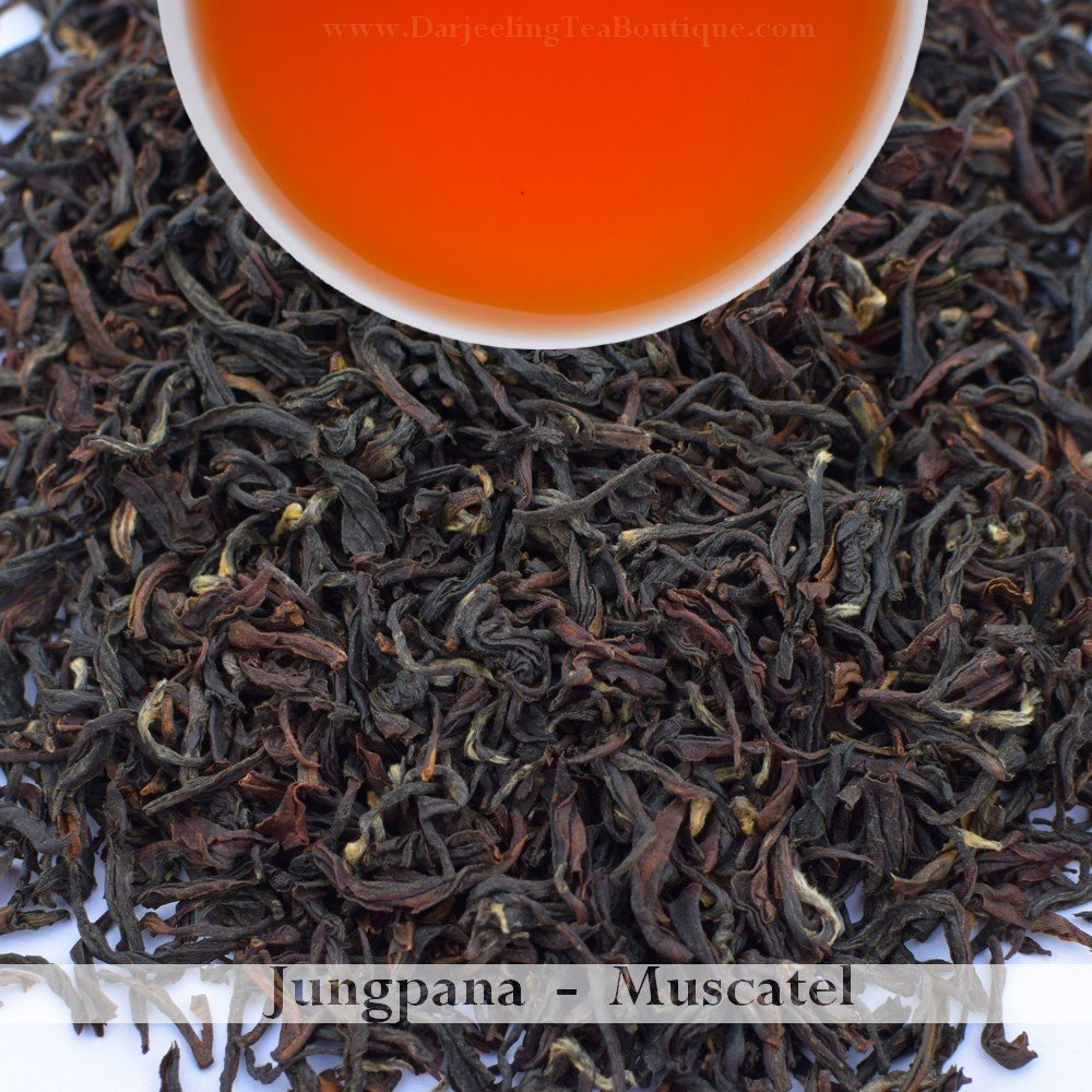 THE SAVOURY & FLAVOURFUL MUSCATEL FROM JUNGPANA  - 2018 Darjeeling 2nd Flush  (100gm / 3.5oz)