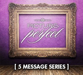 Picture Perfect (Series)