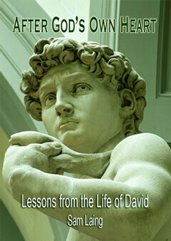 After Gods Own Heart: Lessons From the Life of David