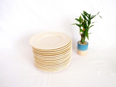 30 Pieces Belleek Limpet Dinner Salad Side Dessert Plates