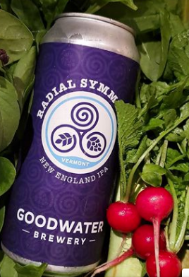 Goodwater Brewery Radial Symmetry IPA 4-Pack