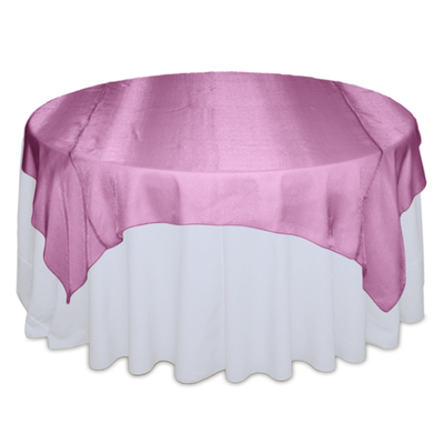 Pink Raspberry Sheer Overlay Rental