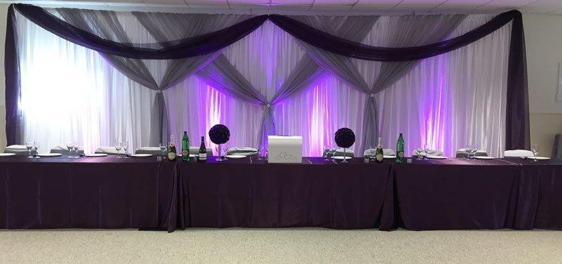 Silver & Eggplant Sheer Backdrop