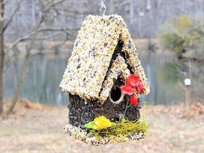 Edible Bird Feeder - Light Roof Tall Birdhouse