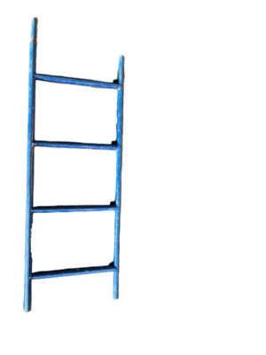 3' ACCESS LADDER