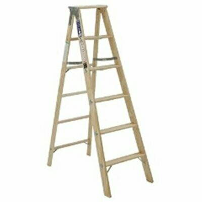 20' WOOD EXT. LADDER 300LBS