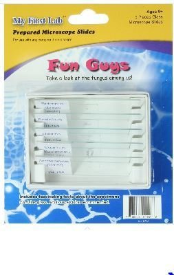 Fun Guys 5pc Slide Set, Priced Per Set