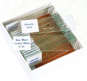 Biology 16 Piece Slide Set, Priced Per Set