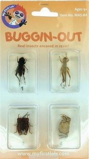 Buggin-OUt, Bug Set, 4 Piece Carded, Price Per Card