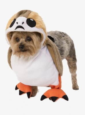 Cosplay Perrito Star Wars
