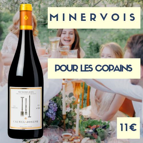 2 bouteilles de Calmel et Joseph, Minervois 2016 (prix spécial 9€)
