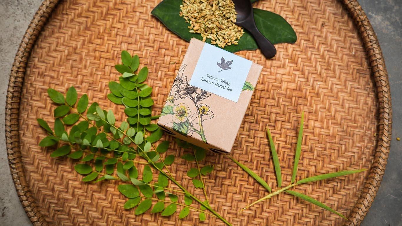 Organic White Lantern herbal tea TQ100WT