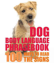 Dog Body Language Phrasebook