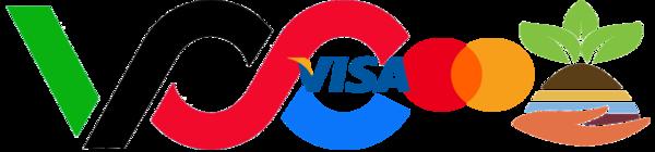 Virtual Credit Card   VCCPRO.COM